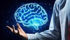 Bases Neuropsicológicas do Desenvolvimento Psicomotor