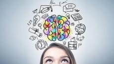 O que é Neuropsicopedagogia?