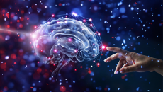 Aspectos Neuropsicopedagógicos da Aprendizagem